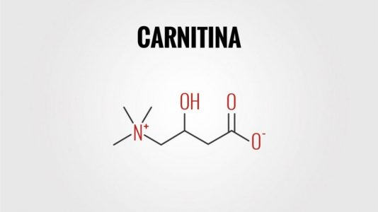 carnitina-per-dimagrire-1-1024x663-1