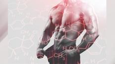 SLIDE-Integratori-di-testosterone-il-re-degli-ormoni-maschili
